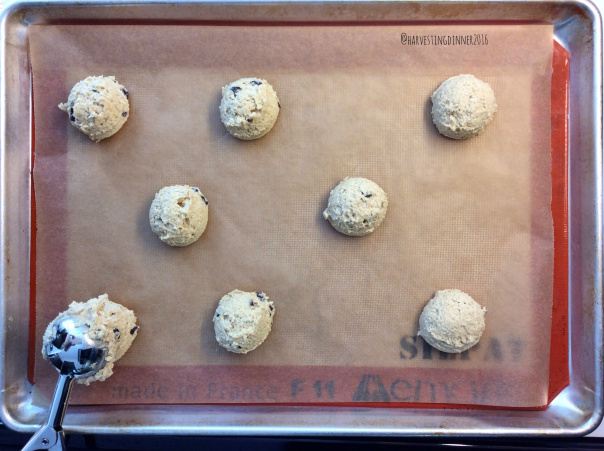 They can be individually frozen at this stage and pulled out when craving warm homemade chocolate chip cookies!