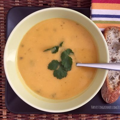 Happy, Happy 2017!  Thai Inspired Butternut Squash Soup